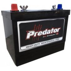 Predator SMF Battery - MFM24-XHD - 12 Volt -  800CCA - 82Ah - Marine Starting - Maintenance Free - Silver-Calcium (MFM24-XHD)